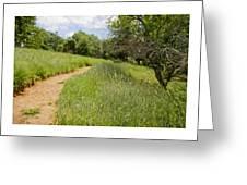 Meadow Path Greeting Card