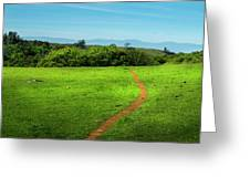 Meadow Trail Greeting Card