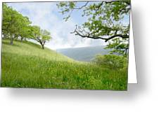 Meadow View Spring Greeting Card