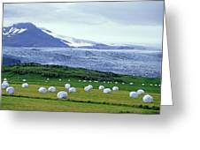 Meadow With Hay Bales And Glaciers Near Jokulsarlon Lagoon In Iceland Greeting Card