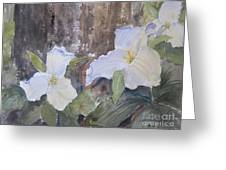 Meaghan's Trillium Greeting Card