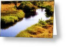 Meandering Channel Greeting Card