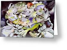 Medallion Series II Greeting Card