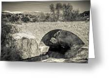 Medieval Bridge #2 Greeting Card