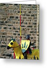 Medieval Knight On His Horse During A Show In Carcassonne Greeting Card