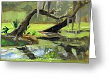 Meditative Swamp Greeting Card