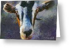Mediterranean Goat Greeting Card
