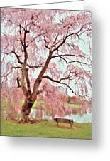 Meet Me Under The Pink Blooms Beside The Pond - Holmdel Park Greeting Card