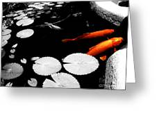 Meeting Of The Koi Greeting Card