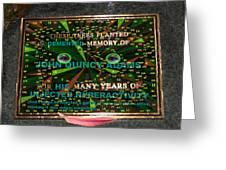 Megaboard 321 Greeting Card