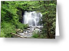 Meigs Falls Greeting Card