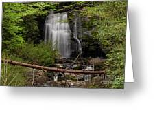 Meigs Falls One Greeting Card