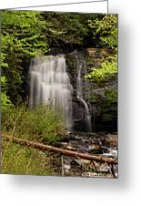 Meigs Falls Two Greeting Card