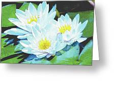 Meliora Greeting Card