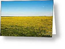 Mello Yellow Greeting Card