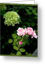 Melody Of Flowers Greeting Card