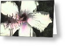 Melting Hibiscus Greeting Card