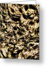 Melting Wood Greeting Card by Wim Lanclus