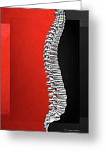 Memento Mori - Silver Human Backbone Over Red And Black Canvas Greeting Card