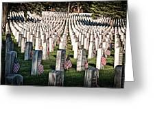Memorial Day Greeting Card by Barry C Donovan