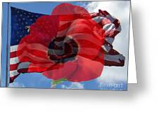 Memorial Day - Remembrance Day - Armistice Day Greeting Card