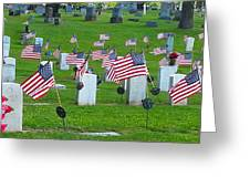 Memorial Day Salute Greeting Card