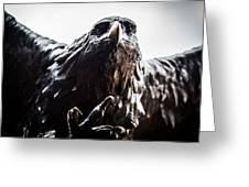 Memorial Eagle Greeting Card