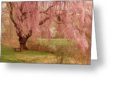 Memories - Holmdel Park Greeting Card
