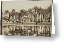 Men With Goats Under Palm Trees On The Water In Bedrechen, Bonfils, C. 1895 - In Or Before 1905 Greeting Card