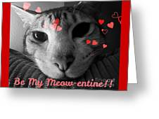 Meow-entine Greeting Card