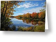 Mercer Bog Greeting Card