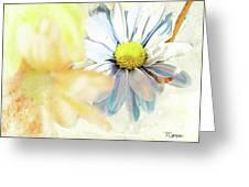 Mercy 2 Greeting Card