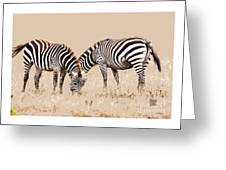 Merging Zebra Stripes Greeting Card