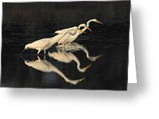 Merritt Island Egrets Greeting Card
