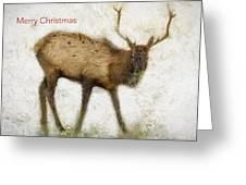 Merry Christmas Elk Greeting Card Greeting Card
