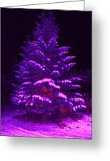 Merry Christmas Tree Greeting Card by Laurie Kidd