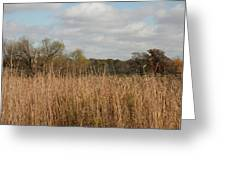 Merwin Prairie Autumn I Greeting Card
