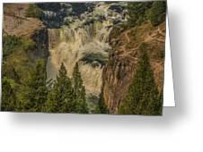Mesa Falls In Summer Greeting Card