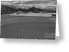 Mesquite Dunes Black And White Greeting Card