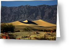 Mesquite Flat Dunes - Death Valley California Greeting Card