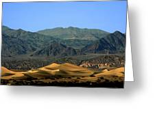 Mesquite Flat Sand Dunes - Death Valley National Park Ca Usa Greeting Card