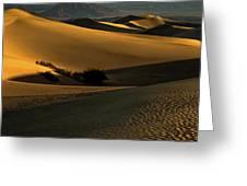 Mesquite Flat Sand Dunes Greeting Card