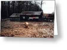 Messy Pig Farm Lot Greeting Card
