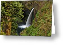 Metlako Falls In Spring Greeting Card