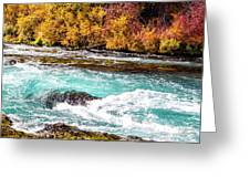 Metolius River Greeting Card by David Millenheft