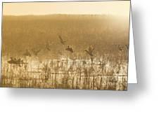 Metzgers Marsh In Fog Greeting Card
