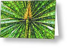 Mexican Fan Palm Leaf Greeting Card
