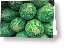 Mexican Gray Squash Greeting Card