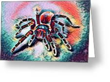Mexican Red Knee Tarantula Greeting Card