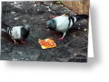 Mexican Standoff Greeting Card